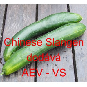 Čínská okurka