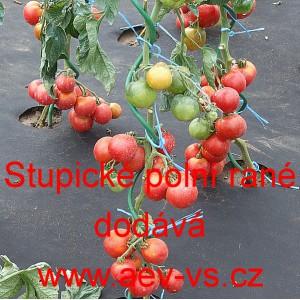 Stupické rajče